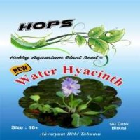 Akvaryum Bitki Tohumu Water Hyacinth 12 li