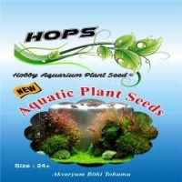 Akvaryum Bitki Tohumu  Aquatic Plant Seeds 12 li