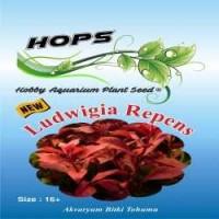 Akvaryum Bitki Tohumu Ludwigia Repens 12 li