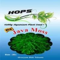 Akvaryum Bitki Tohumu Java Moss 12 li