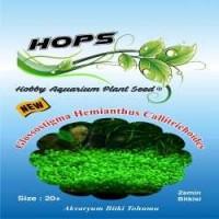 Akvaryum Bitki Tohumu  Glossostigma Hemianthus Callitrichoides 12 li