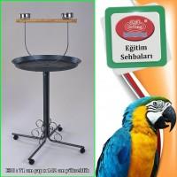 Dayang Papağan Eğitim Sehbası 70X145 Cm