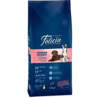 Felicia High Premium Kuzulu Büyük Irk Yavru Köpek Maması 15Kg