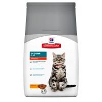 Hills Science Plan Evde Yaşayan Kediler için Tavuklu Yetişkin Kedi Maması 1.5 Kg