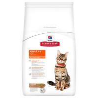 Hills Adult Optimal Care Kuzu Etli Pirinçli Yetişkin Kedi Maması 2 Kg
