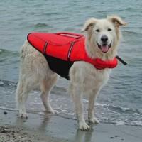 Trixie Köpek Can Yeleği 44cm M
