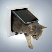 Trixie Kedi Kapısı, Beyaz