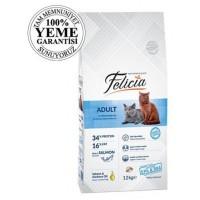 Felicia High Premium Somonlu Yetişkin Kedi Maması 12 Kg