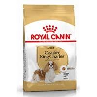 Royal Canin Cavalier King Charles Yetişkin Köpek Maması 3 Kg