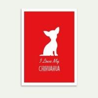 Lolidogs Chihuahua Çerçeve Kırmızı