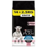 Pro Plan Adult Large Sensitive Somonlu Hassas Yetişkin Köpek Maması 14 Kg (+2,5 Kg Hediyeli)