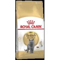 Royal Canin British Shorthair Için Özel Yetişkin Kedi Mamasi 2 Kg