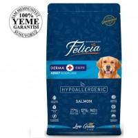 Felicia High Premium Low Grain Düşük Tahıllı Somonlu Yetişkin Köpek Maması 15Kg
