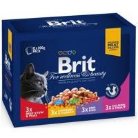Brit Premium Pouch Kedi Maması Etli Ve Balıkli Çeşitler 12X100 Gr