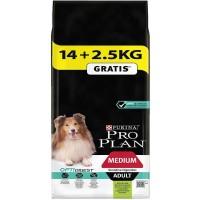 Pro Plan Adult Sensitive Kuzu Etli Yetişkin Köpek Maması 14 Kg (+2.5 Kg Hediyeli)