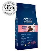 Felicia High Premium Low Grain Düşük Tahıllı Kuzu Etli Büyük Irk Yavru Köpek Maması 3 Kg