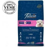 Felicia High Premium Low Grain Düşük Tahıllı Kuzu Etli Büyük Irk Yavru Köpek Maması 15Kg